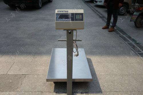 100kg砝码计量计重电